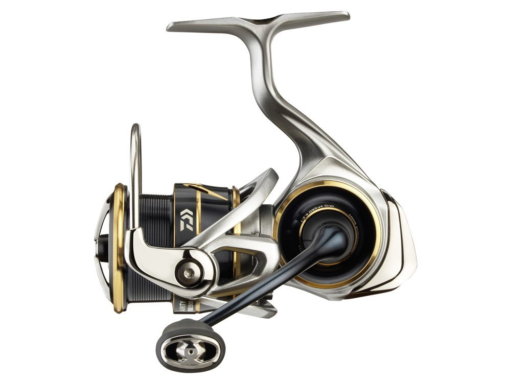 Daiwa reels, new Polish lures and many new products 2021