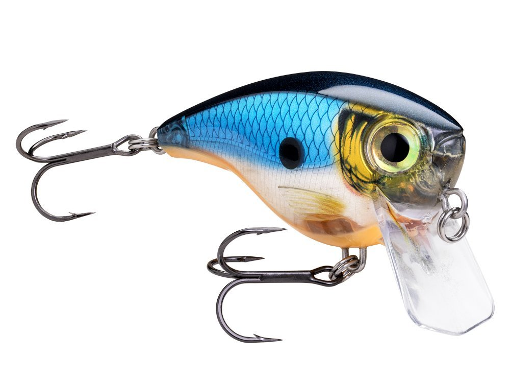 New Rapala and Daiwa products for 2020  - already in stock
